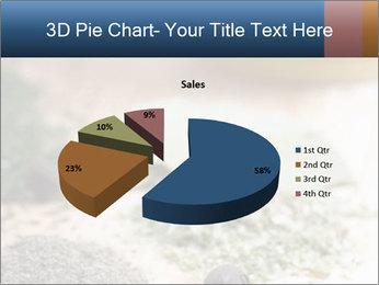 0000060646 PowerPoint Templates - Slide 35