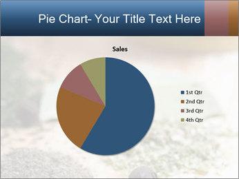 0000060646 PowerPoint Templates - Slide 36