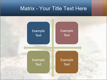 0000060646 PowerPoint Templates - Slide 37