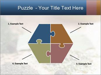 0000060646 PowerPoint Templates - Slide 40