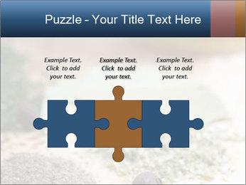 0000060646 PowerPoint Templates - Slide 42