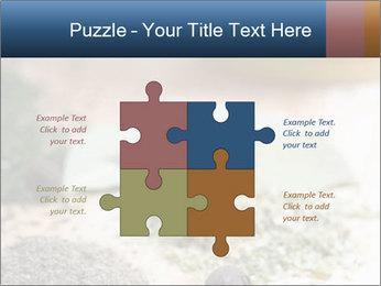 0000060646 PowerPoint Templates - Slide 43