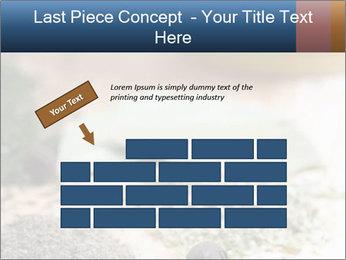 0000060646 PowerPoint Templates - Slide 46