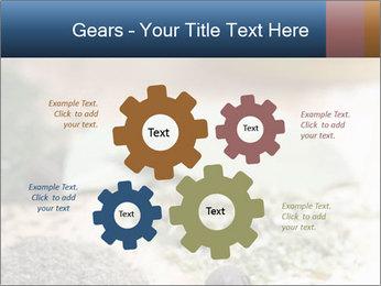 0000060646 PowerPoint Templates - Slide 47