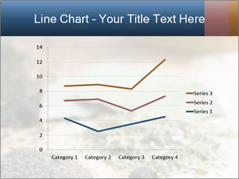0000060646 PowerPoint Templates - Slide 54