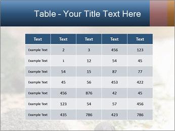 0000060646 PowerPoint Templates - Slide 55