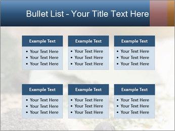 0000060646 PowerPoint Templates - Slide 56