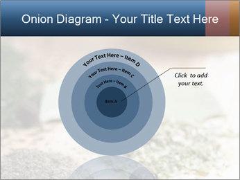 0000060646 PowerPoint Templates - Slide 61