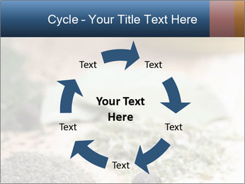 0000060646 PowerPoint Templates - Slide 62