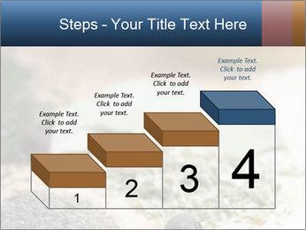 0000060646 PowerPoint Templates - Slide 64