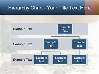 0000060646 PowerPoint Templates - Slide 67