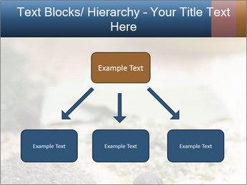 0000060646 PowerPoint Templates - Slide 69