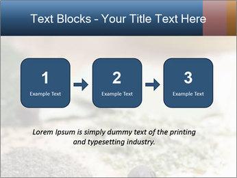 0000060646 PowerPoint Templates - Slide 71