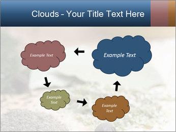0000060646 PowerPoint Templates - Slide 72