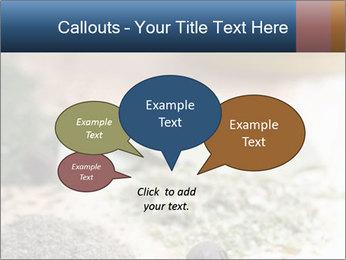 0000060646 PowerPoint Templates - Slide 73