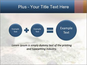 0000060646 PowerPoint Templates - Slide 75