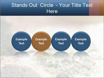 0000060646 PowerPoint Templates - Slide 76
