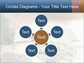 0000060646 PowerPoint Templates - Slide 78