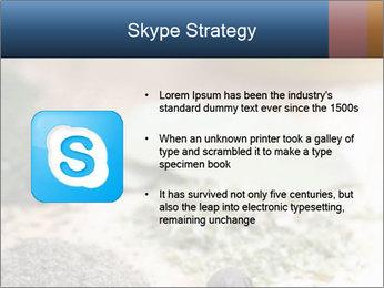 0000060646 PowerPoint Templates - Slide 8
