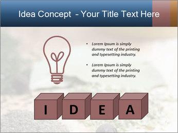0000060646 PowerPoint Templates - Slide 80