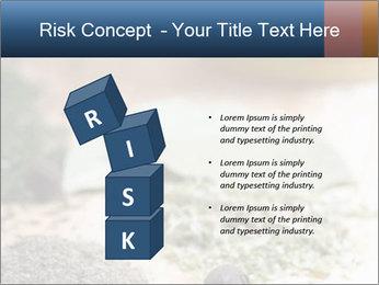 0000060646 PowerPoint Templates - Slide 81