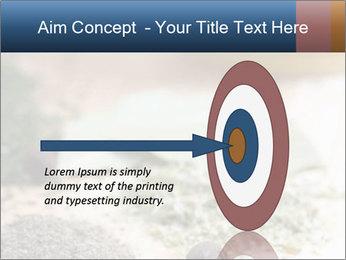 0000060646 PowerPoint Templates - Slide 83