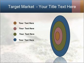 0000060646 PowerPoint Templates - Slide 84