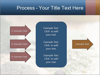 0000060646 PowerPoint Templates - Slide 85
