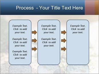 0000060646 PowerPoint Templates - Slide 86