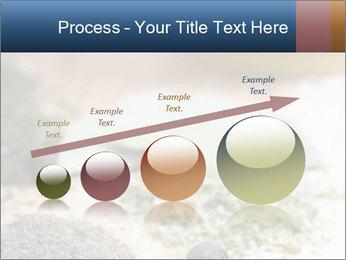 0000060646 PowerPoint Templates - Slide 87