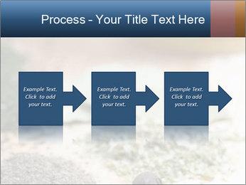 0000060646 PowerPoint Templates - Slide 88