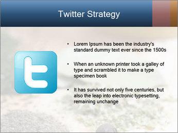 0000060646 PowerPoint Templates - Slide 9
