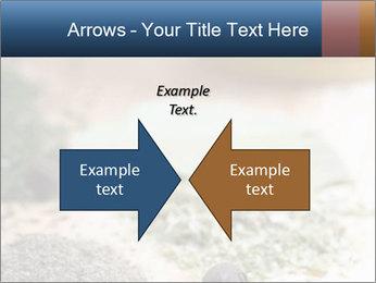 0000060646 PowerPoint Templates - Slide 90