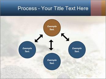 0000060646 PowerPoint Templates - Slide 91