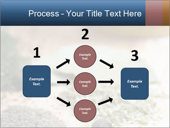 0000060646 PowerPoint Templates - Slide 92