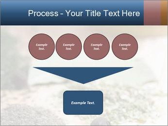 0000060646 PowerPoint Templates - Slide 93