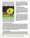 0000060651 Word Templates - Page 4