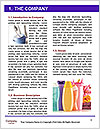0000060656 Word Templates - Page 3