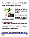 0000060656 Word Templates - Page 4