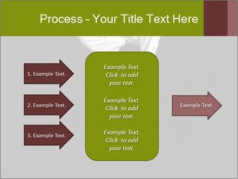 0000060658 PowerPoint Template - Slide 85