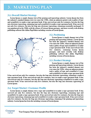 0000060676 Word Template - Page 8