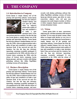 0000060686 Word Template - Page 3