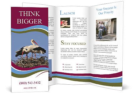 0000060688 Brochure Template