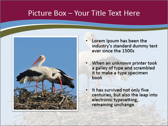 0000060688 PowerPoint Template - Slide 13