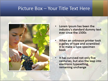 0000060702 PowerPoint Template - Slide 13