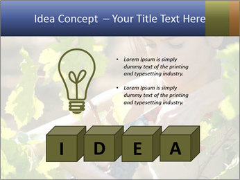 0000060702 PowerPoint Template - Slide 80
