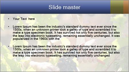 0000060702 PowerPoint Template - Slide 2