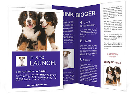 0000060703 Brochure Template