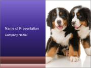 0000060703 PowerPoint Templates
