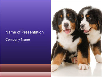 0000060703 PowerPoint Template - Slide 1